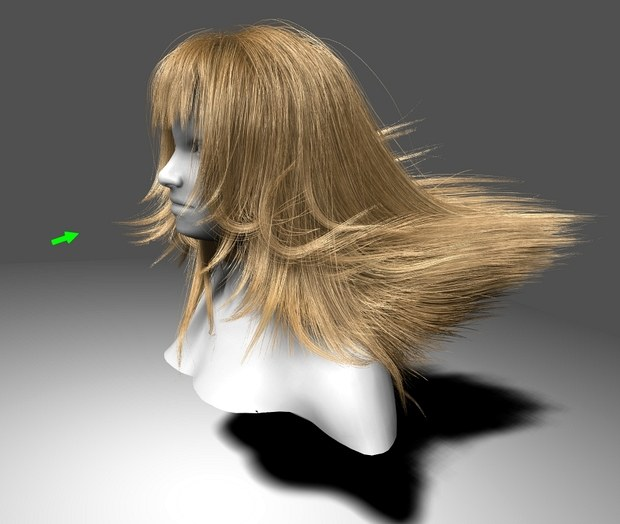 Fermi hair simulation